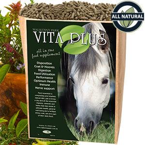 Equine Supplements